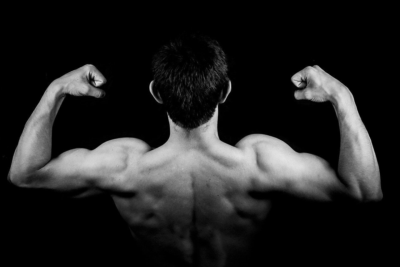 best-strategies-to-extract-maximum-potential-out-of-your-body-building-exercises