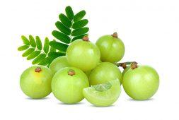 10-health-benefits-of-gooseberry-amla